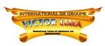 logo_vldx